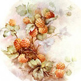 Yellow Raspberries by Sonie Ames