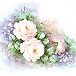 Pink Double Roses by Sonie Ames