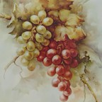 Grapes by Sonie Ames