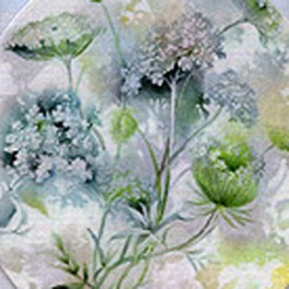 Queen Anne's Lace by Celee Evans