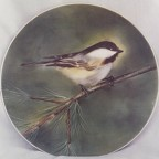 Chickadee by Camille Muller