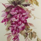 Wisteria by Mary Ashcroft