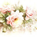 Roses and Daisies by Sonie Ames