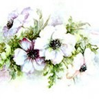 Anemones by Sonie Ames